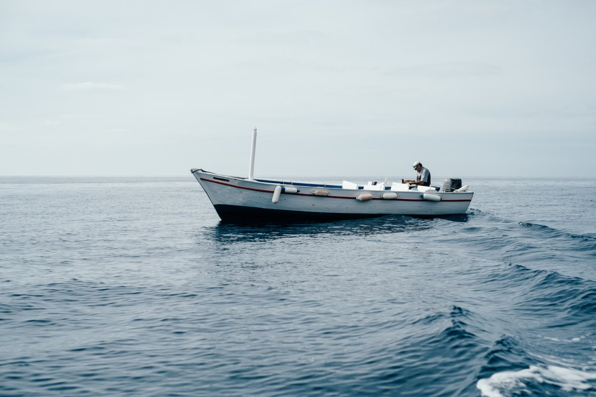 Getting Back Out There:      Online Dating/Seabound Swedish